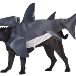 shark_dog_costume