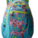 teal_backpacks